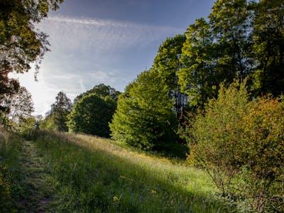 Schloss-Park